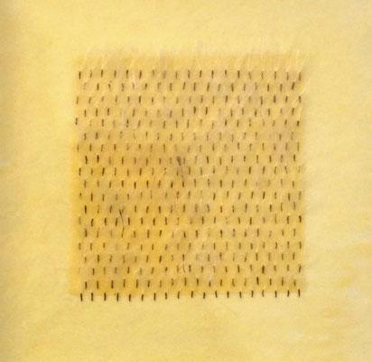 Petasites _ Pestwurzfruchtstände/Bienenwachs/Papier, 22 x 22 x 3,5 cm, 2019