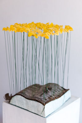 Stummer Frühling, 2011, Holz, Draht, Bienenwachs, 30x30x40