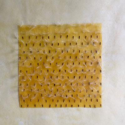 Löwenzahn 1 _ Löwenzahnfruchtstände/Bienenwachs/Papier, 22 x 22 x 3,5 cm, 2017