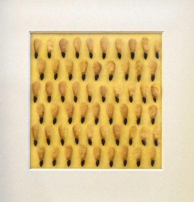 Picea _ Fichtensamen/Bienenwachs, 22 x 22 x 3,5 cm, 2019