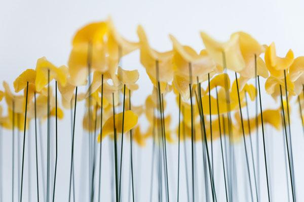 Stummer Frühling, Ausschnitt