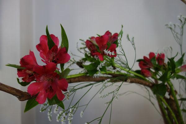 Thema: Barmherzigkeit / Blüten