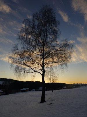 Winterabend bei Frauenau