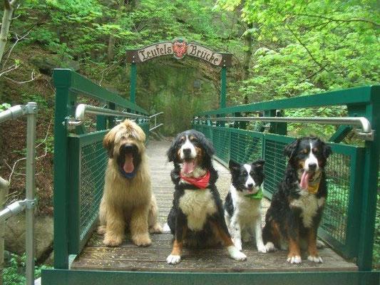 Nepomuk, Senta, Jule und Gusti auf der Teufelsbrücke im Bodetal