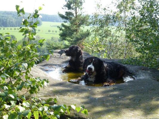 """""""Hundepool"""" auf dem Spanghorn"""