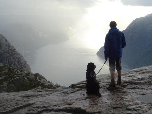 Blick vom Preikestolen über den Lysefjord