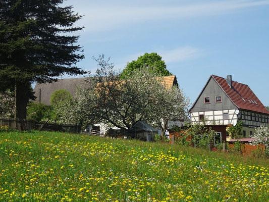 Frühling in der Sächsischen Schweiz