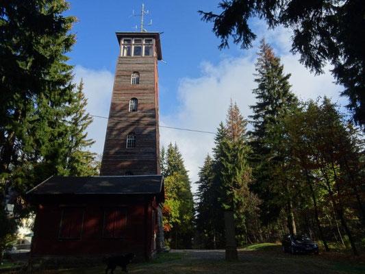 Der Aussichtsturm auf dem Kuhberg