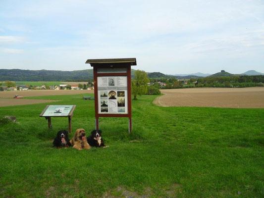 Auf dem Malerweg am Wolfsberg