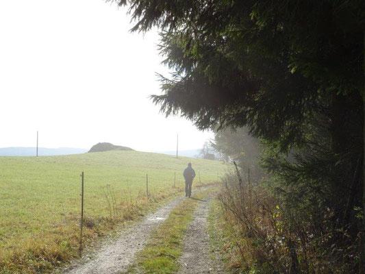 Wanderer im Morgendunst