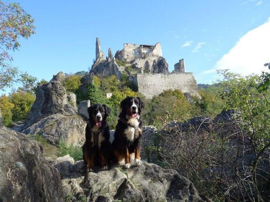 Vreni und Selma an der Ruine Dürnstein