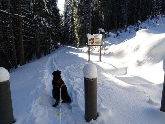 Die Grenze zu Böhmen