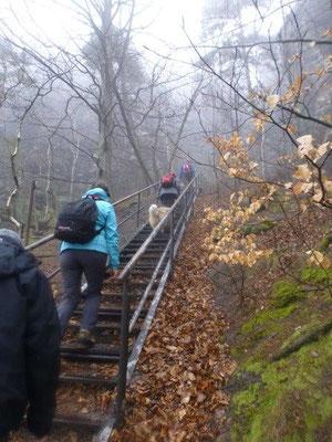Im Südaufstieg zum Lilienstein