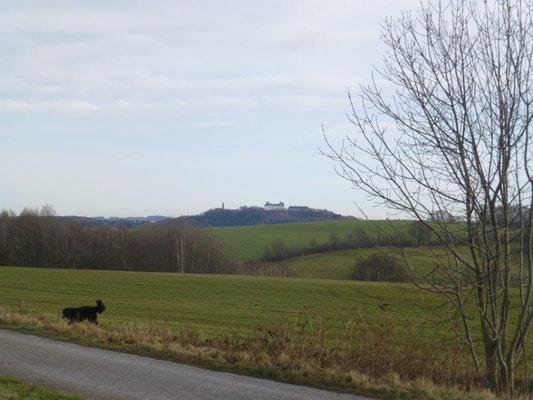 Blick vom Panoramaweg zur Augustusburg