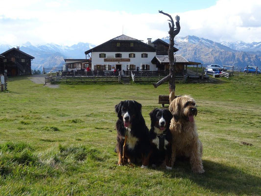 Vreni, Selma und Nepomuk vor der Hirzerhütte