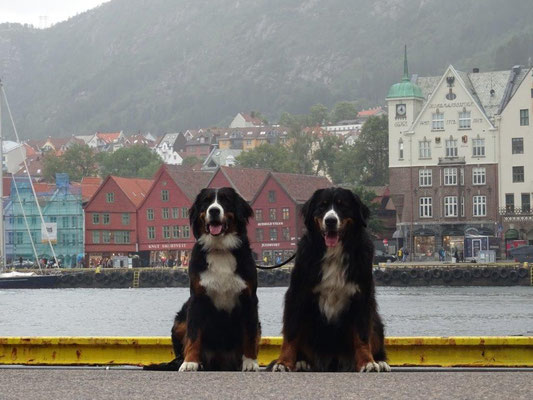 Selma und Vreni in Bergen