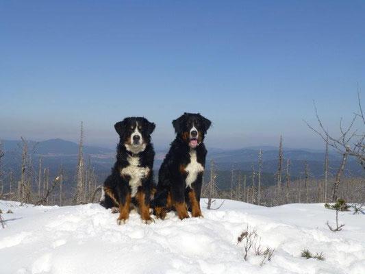 Gusti und Vreni hoch überm Böhmerwald