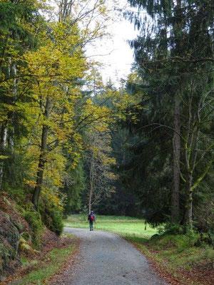 Herbststimmung an den Quenenwiesen