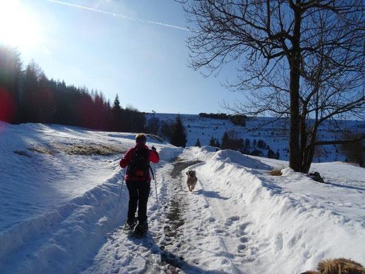 Auf dem Weg zur Talsperre