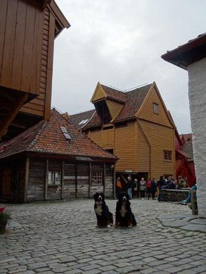 In den malerischen Innenhöfen von Bryggen fühlt man sich ins Mittelalter zurück versetzt