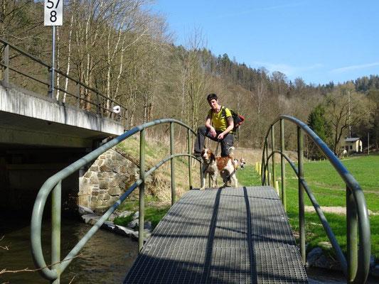 Gitterbrücke im Sebnitztal