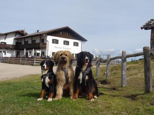 Selma, Vreni und Nepomuk posieren vorm Gasthaus Unterhorn