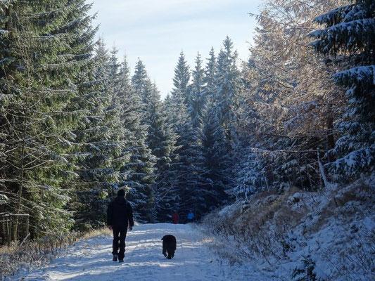 Einsame Winterwanderer