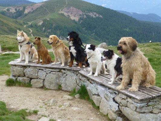 Gruppenfoto auf Meran 2000