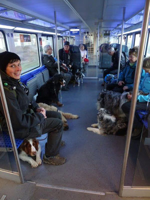 Im Zug nach Königstein