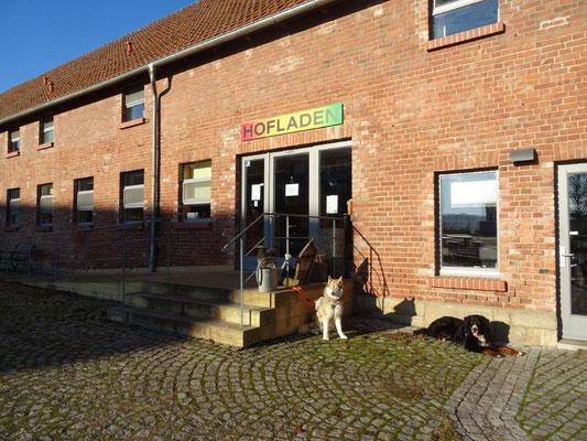 Im gutseigenen Hofladen gibt es Schaf- und Ziegenmilchprodukte sowie Fleisch und Eier aus eigener Produktion