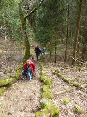 Aufstieg auf den Scheibenberg