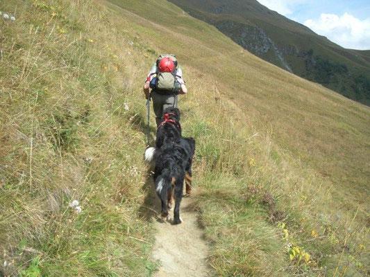 Aufstieg über den Blumenweg zur Sajathütte