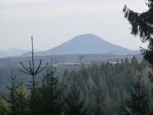 Durch eine Lücke im Wald kann man sogar den tschechischen Rosenberg sehen.