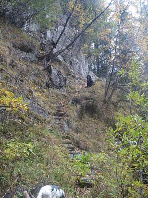 Aufstieg von Weißenbach zum Kellerbauerweg