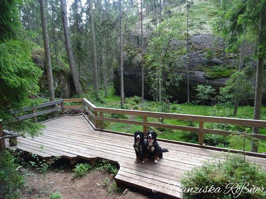 Es gibt Holzbolen-Wege...