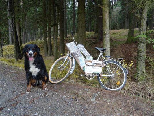 Was es wohl mit diesem Fahrrad auf sich hat?
