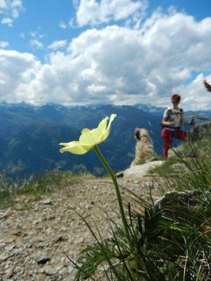 Abstieg von der Hönigspitze