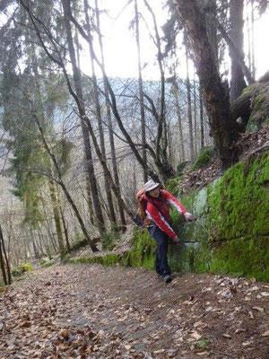 ... bis Frauchen sich den steilen, rutschigen Steig nach oben gekämpft hat. Zum Glück boten die Mauerfugen hin und wieder Gelegenheit zum Festhalten. (Foto: Kaj Kinzel)