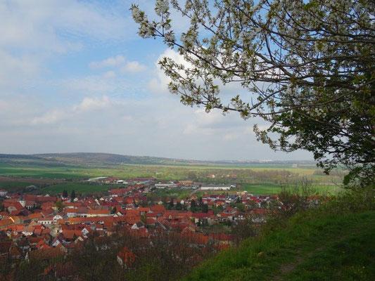 Blick auf Mühlberg