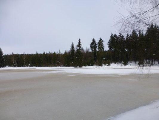 Der Lehmheider Teich