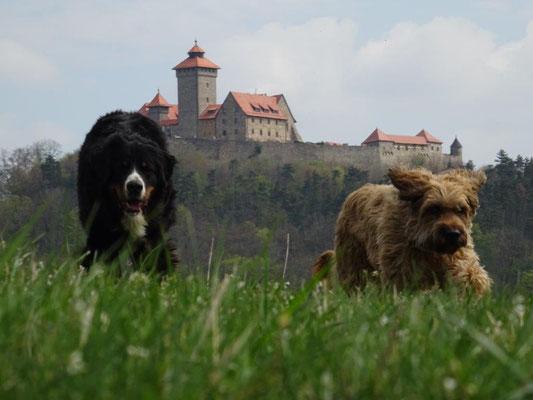 Vreni und Nepomuk vor der Veste Wachsenburg