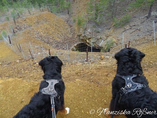 Auf dem Grubenwanderweg wandelt man auf den Spuren einstiger Kupferminen