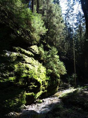 Im Kohlichtgraben