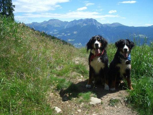 ... über das Passeier-, Etsch- und Ultental