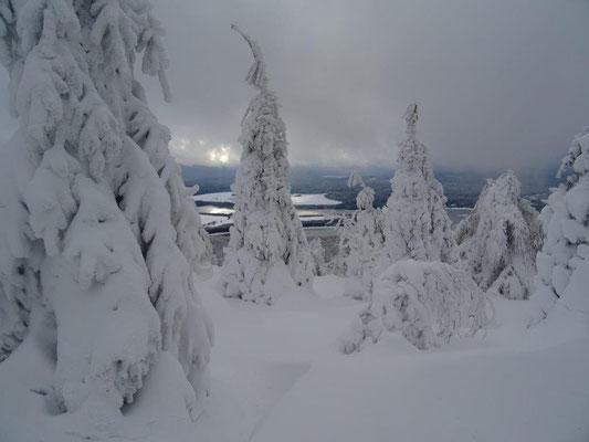 Winterwonderland auf dem Haßberg