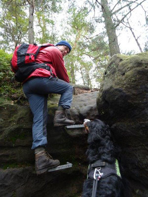 Und wieder eine Kletterstelle - diese ist im Auf- und Abstieg (!) zu überwinden