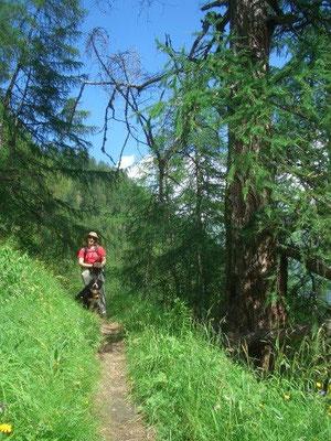 Aufstieg durch die Zopatnitzenschlucht zur Bergerseehütte