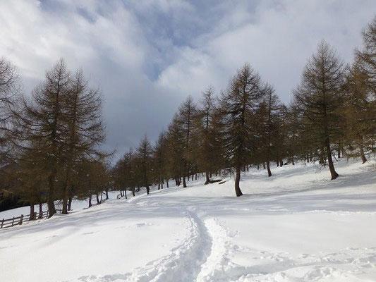Winterlandschaft an der Gottschaunalm