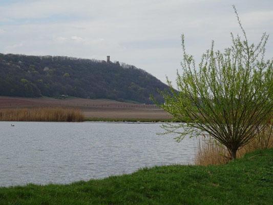 See an der Wachsenburg