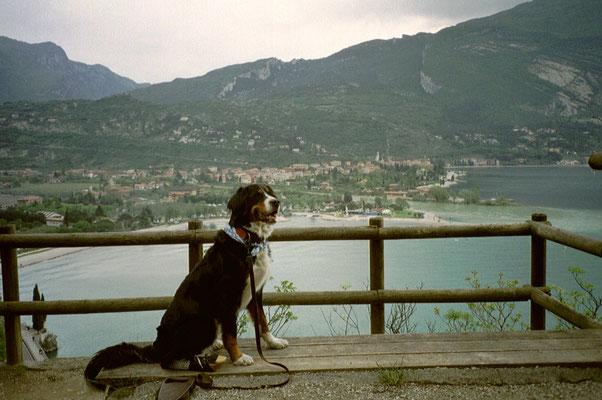 Auf dem Weg zum Monte Brione